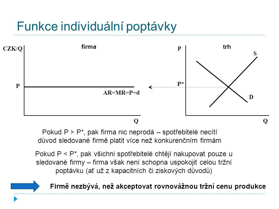 Funkce individuální poptávky