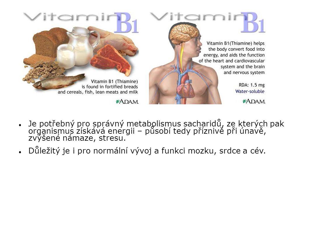 Důležitý je i pro normální vývoj a funkci mozku, srdce a cév.