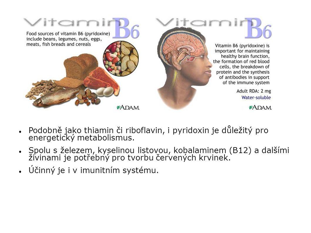 Účinný je i v imunitním systému.