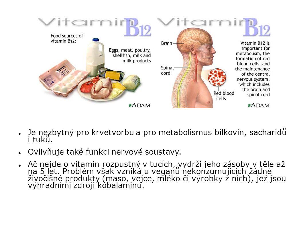Ovlivňuje také funkci nervové soustavy.