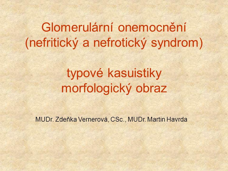 Glomerulární onemocnění (nefritický a nefrotický syndrom) typové kasuistiky morfologický obraz