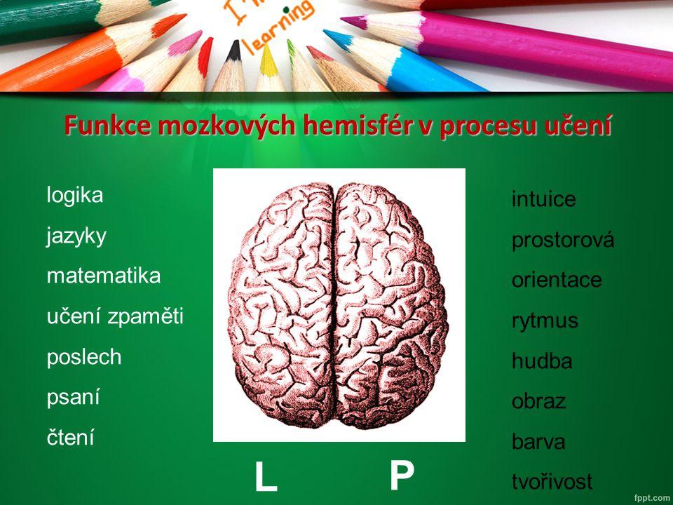 Funkce mozkových hemisfér v procesu učení