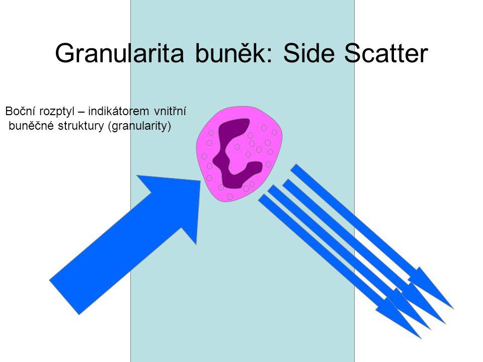 Granularita buněk: Side Scatter
