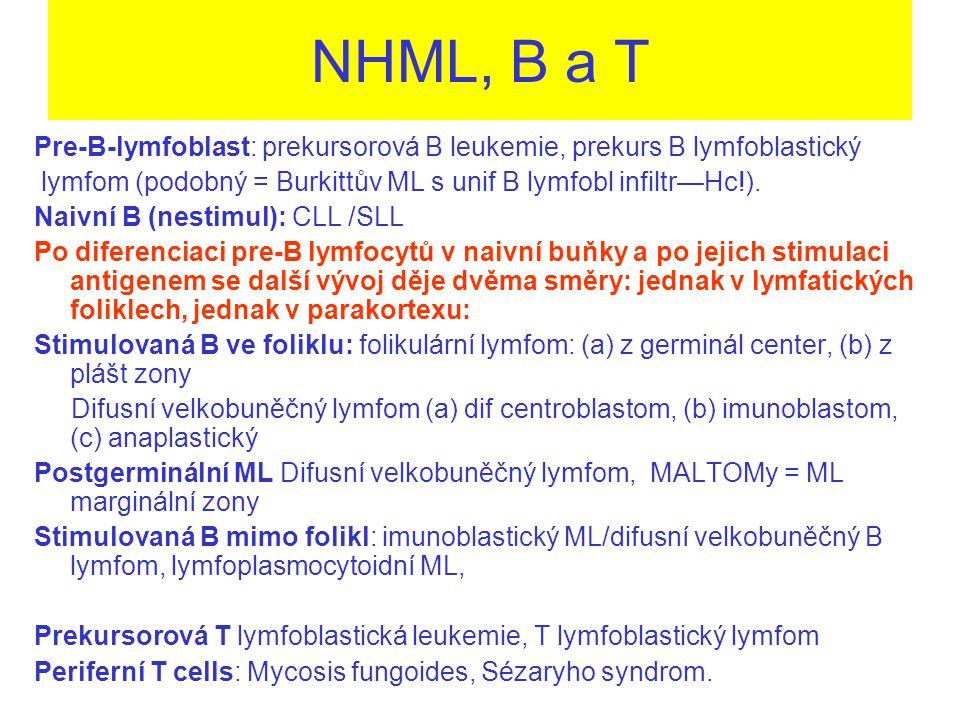 NHML, B a T Pre-B-lymfoblast: prekursorová B leukemie, prekurs B lymfoblastický. lymfom (podobný = Burkittův ML s unif B lymfobl infiltr—Hc!).