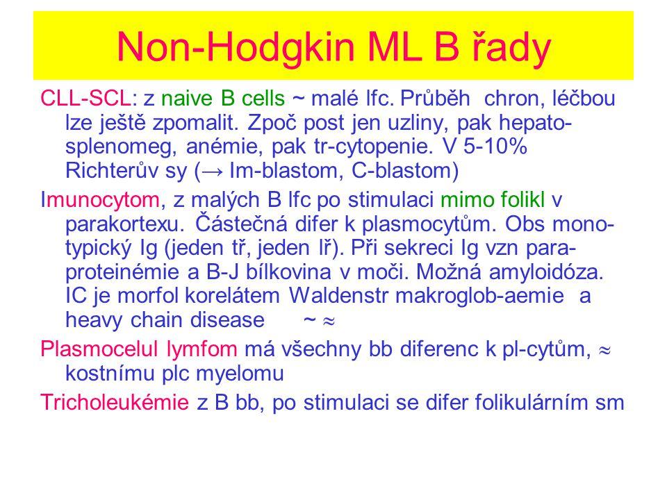 Non-Hodgkin ML B řady
