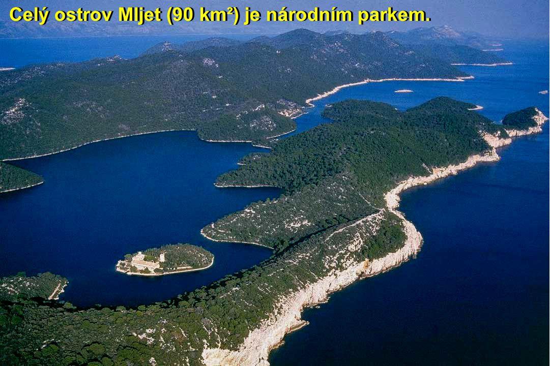 Celý ostrov Mljet (90 km²) je národním parkem.