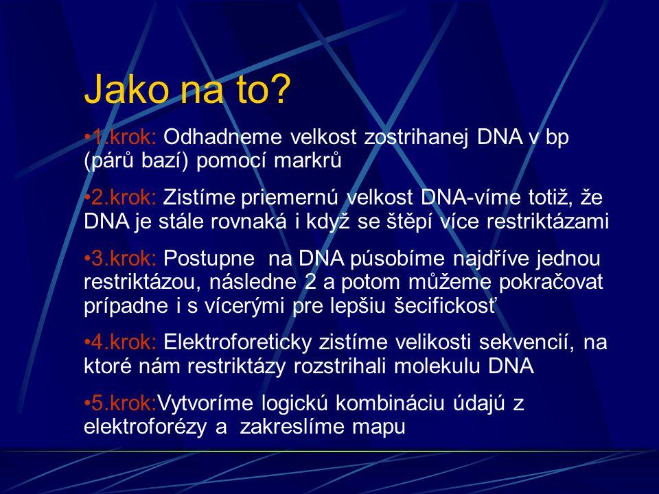 Jako na to 1.krok: Odhadneme velkost zostrihanej DNA v bp (párů bazí) pomocí markrů.