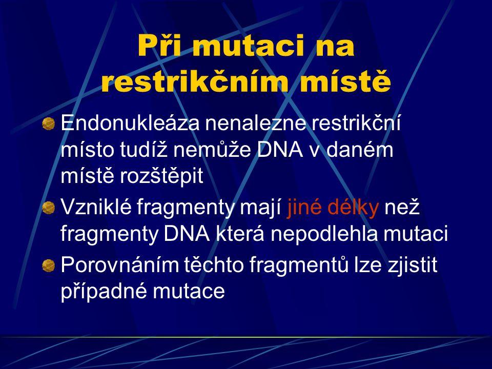 Při mutaci na restrikčním místě