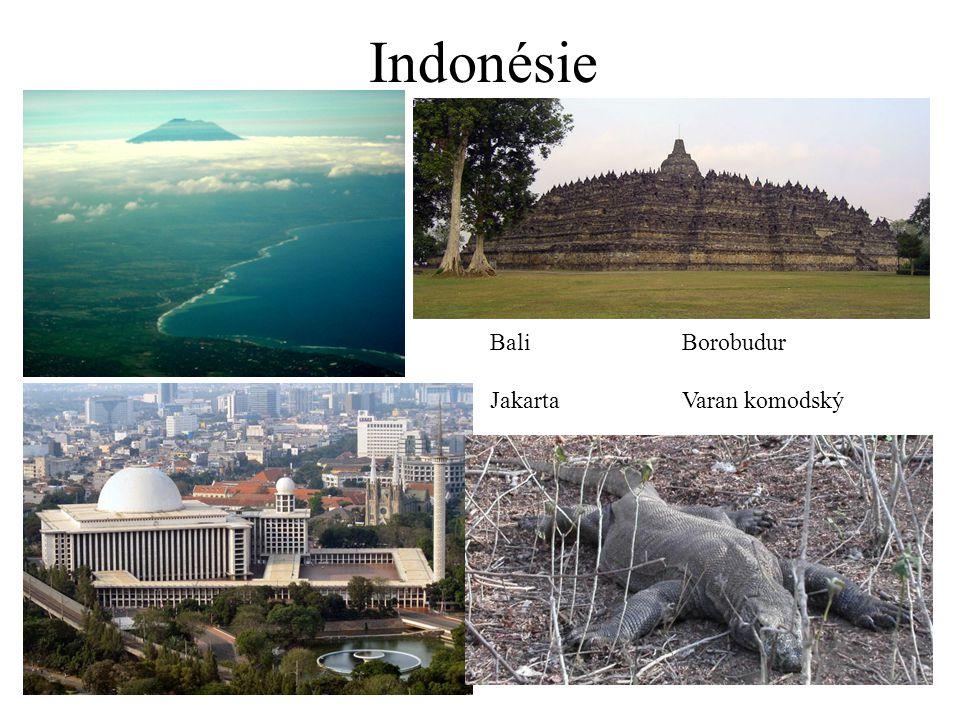 Indonésie Bali Borobudur Jakarta Varan komodský