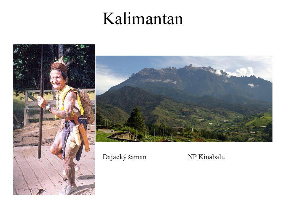 Kalimantan Dajacký šaman NP Kinabalu