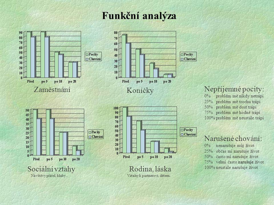 Funkční analýza Zaměstnání Koníčky Nepříjemné pocity: