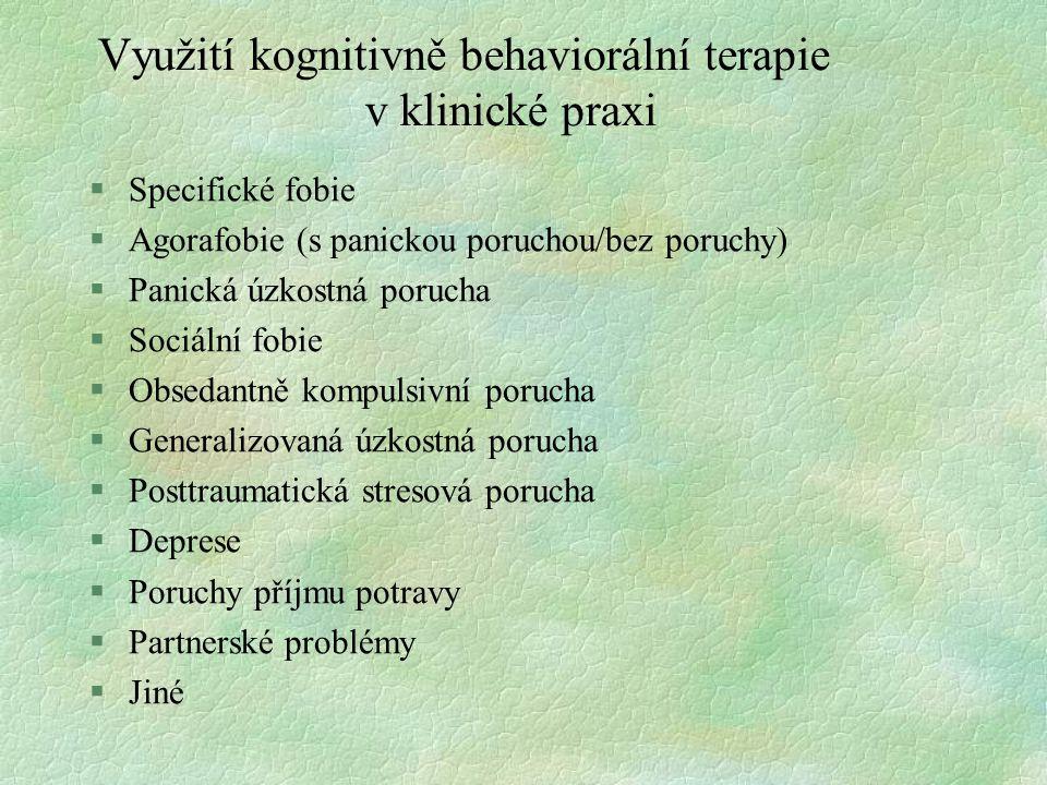 Využití kognitivně behaviorální terapie v klinické praxi
