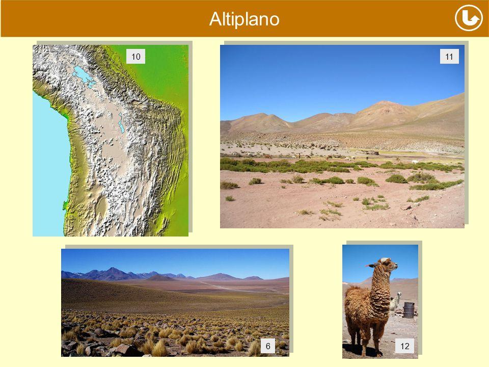 Altiplano 10 11 6 12