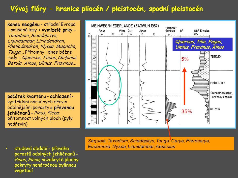 Vývoj flóry - hranice pliocén / pleistocén, spodní pleistocén