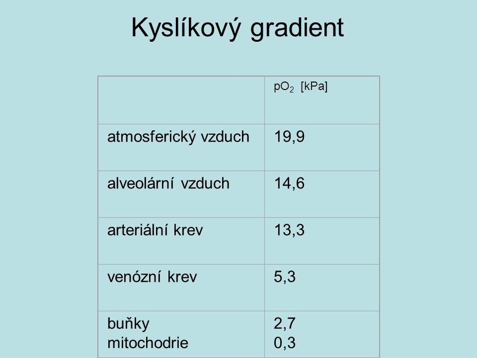 Kyslíkový gradient atmosferický vzduch 19,9 alveolární vzduch 14,6