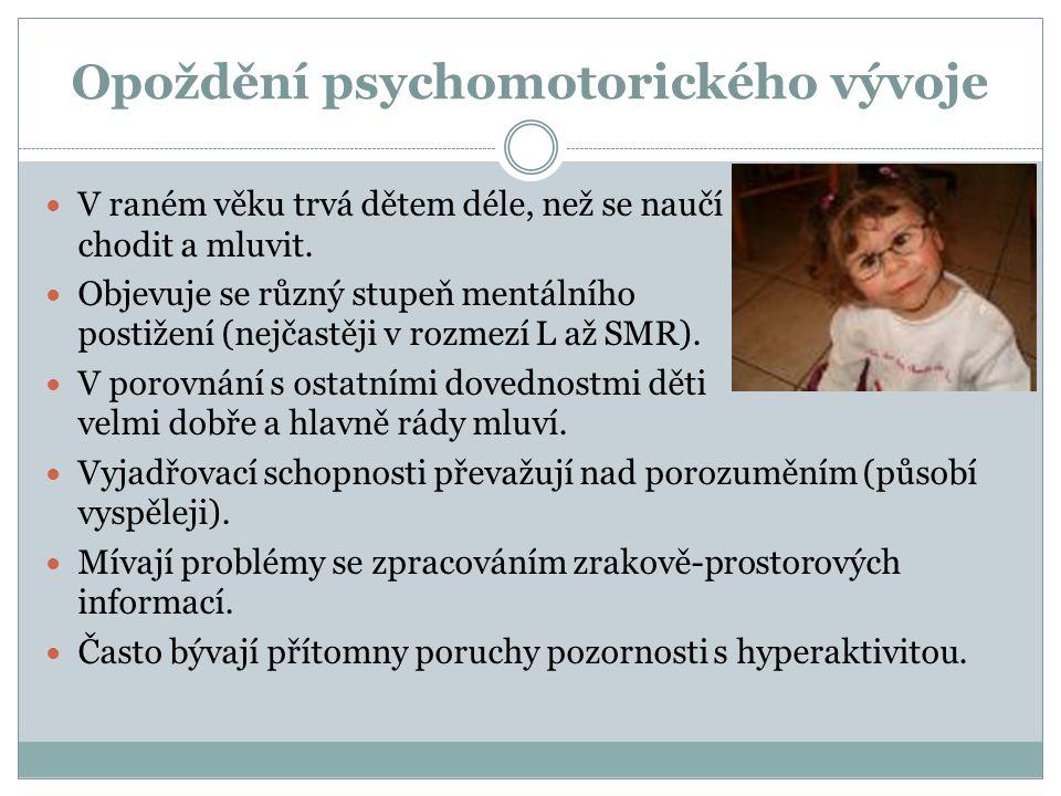 Opoždění psychomotorického vývoje