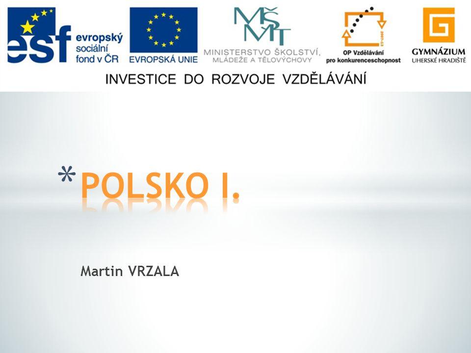 POLSKO I. Martin VRZALA