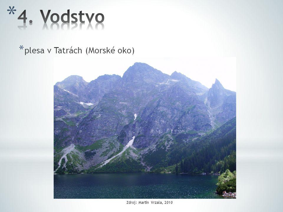 4. Vodstvo plesa v Tatrách (Morské oko) Zdroj: Martin Vrzala, 2010