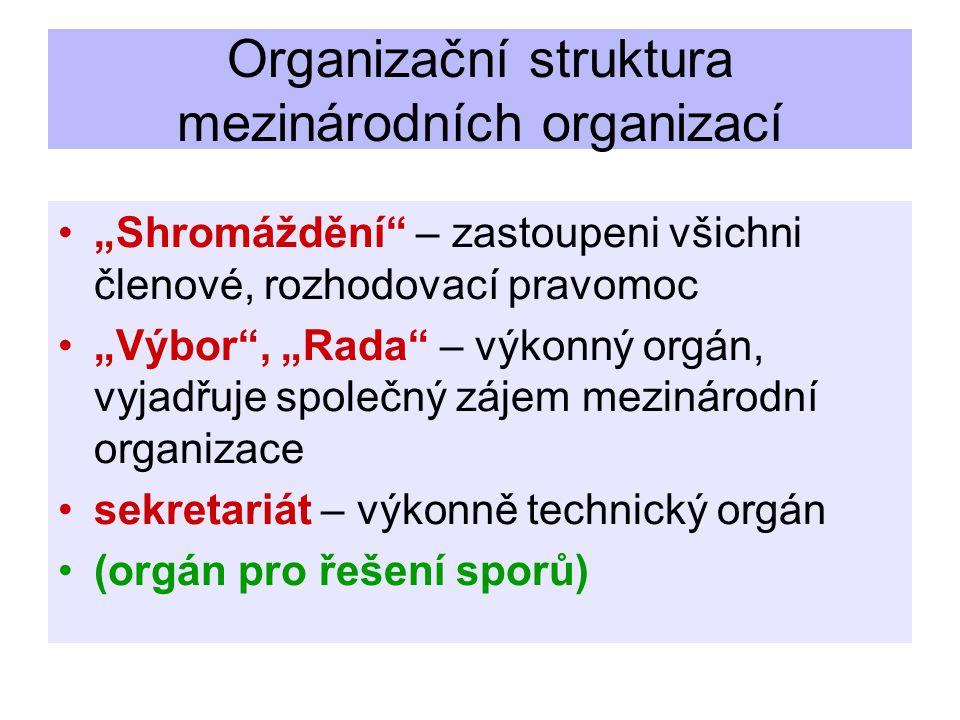 Organizační struktura mezinárodních organizací