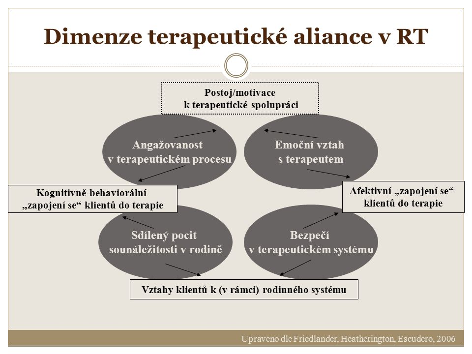 Dimenze terapeutické aliance v RT