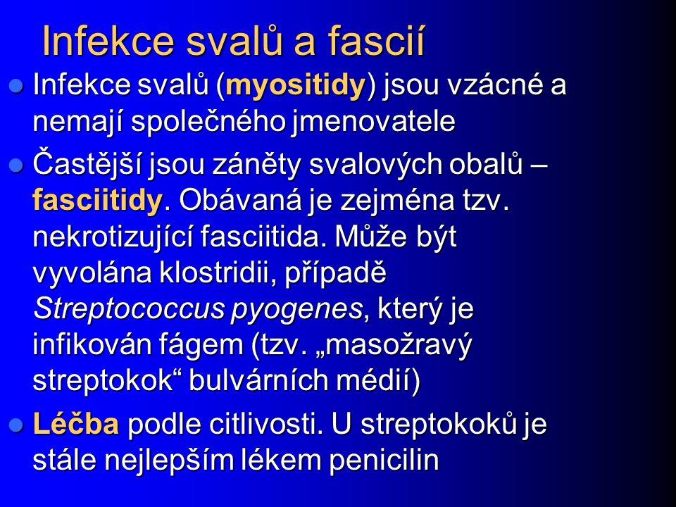 Infekce svalů a fascií Infekce svalů (myositidy) jsou vzácné a nemají společného jmenovatele.