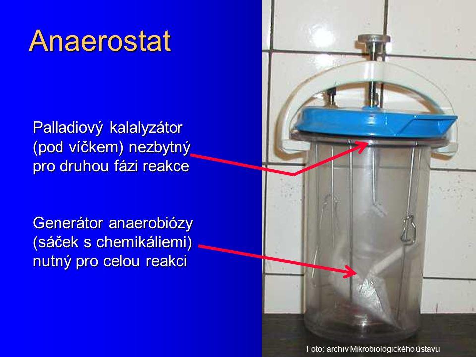 Anaerostat Palladiový kalalyzátor (pod víčkem) nezbytný pro druhou fázi reakce. Generátor anaerobiózy (sáček s chemikáliemi) nutný pro celou reakci.