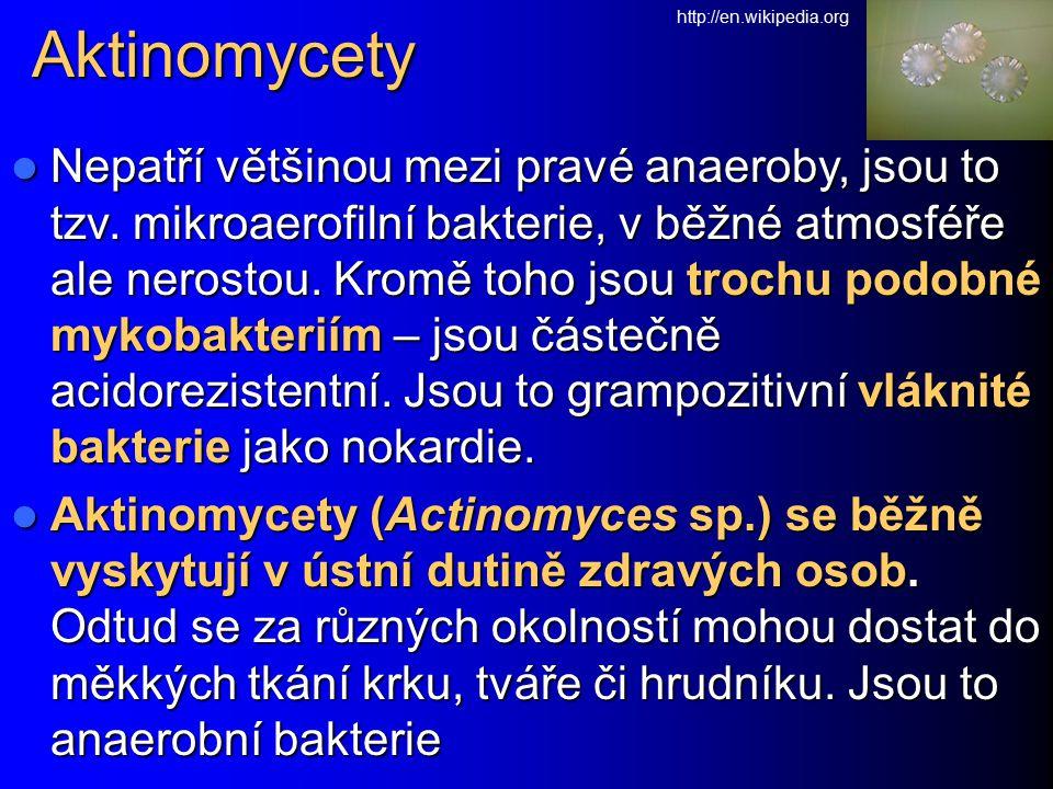 Aktinomycety http://en.wikipedia.org.