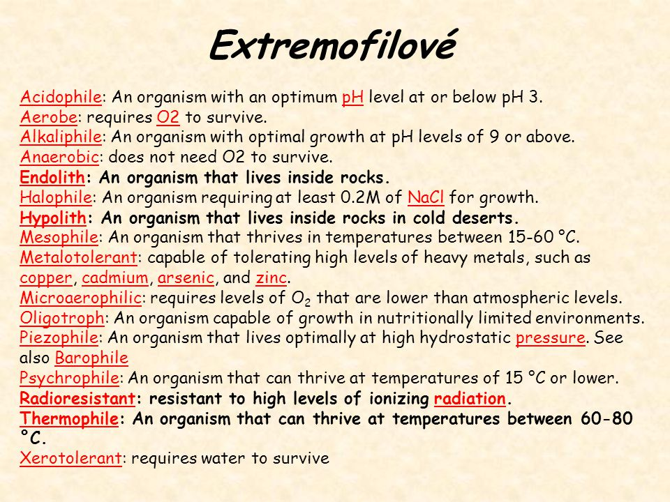 Extremofilové Acidophile: An organism with an optimum pH level at or below pH 3. Aerobe: requires O2 to survive.