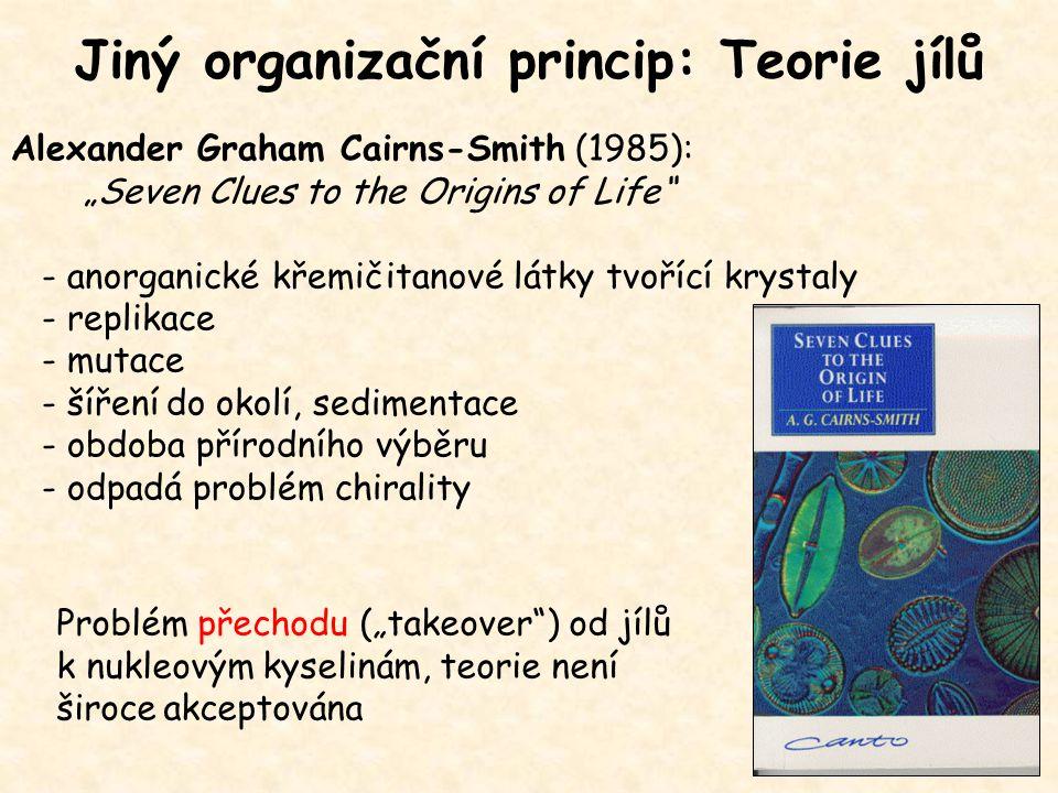 Jiný organizační princip: Teorie jílů