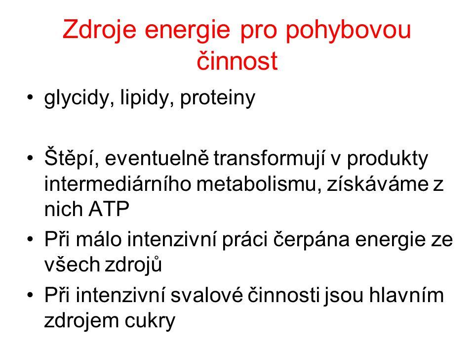 Zdroje energie pro pohybovou činnost