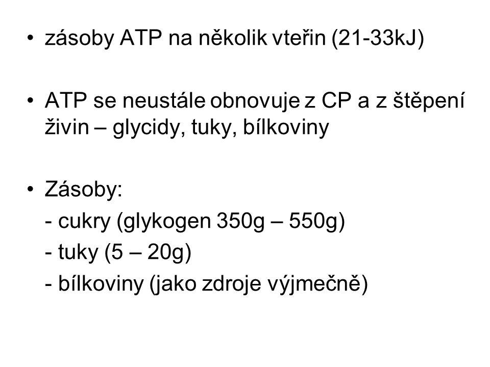 zásoby ATP na několik vteřin (21-33kJ)