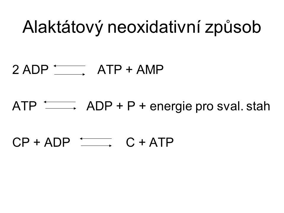 Alaktátový neoxidativní způsob