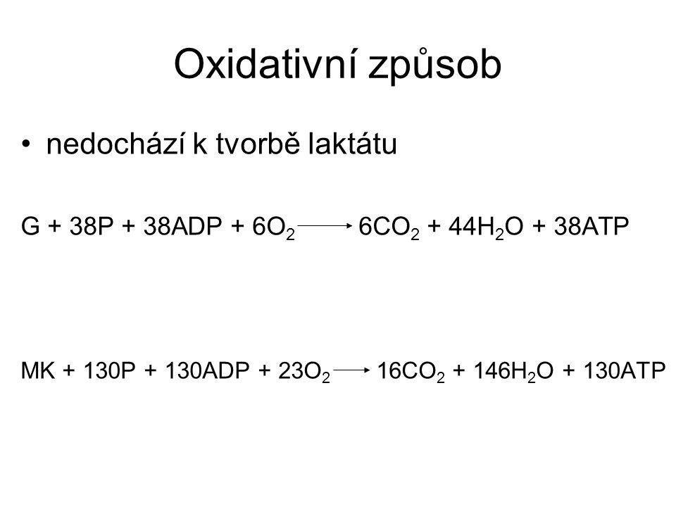 Oxidativní způsob nedochází k tvorbě laktátu