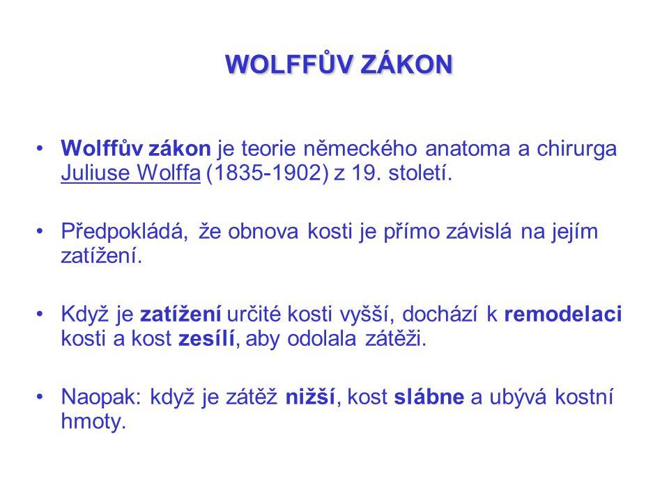 WOLFFŮV ZÁKON Wolffův zákon je teorie německého anatoma a chirurga Juliuse Wolffa (1835-1902) z 19. století.