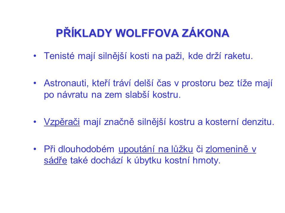 PŘÍKLADY WOLFFOVA ZÁKONA