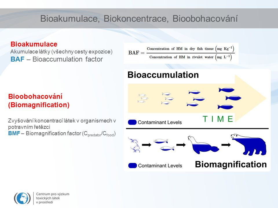 Bioakumulace, Biokoncentrace, Bioobohacování