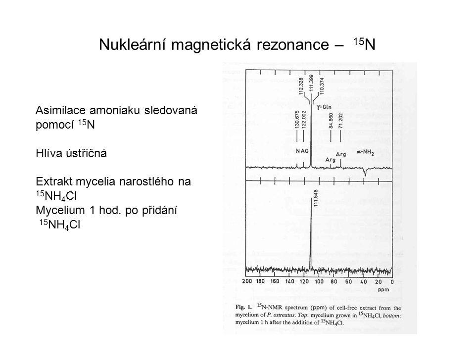 Nukleární magnetická rezonance – 15N
