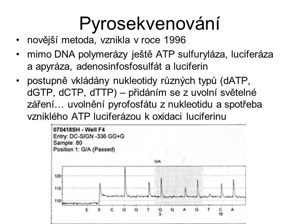 Pyrosekvenování novější metoda, vznikla v roce 1996