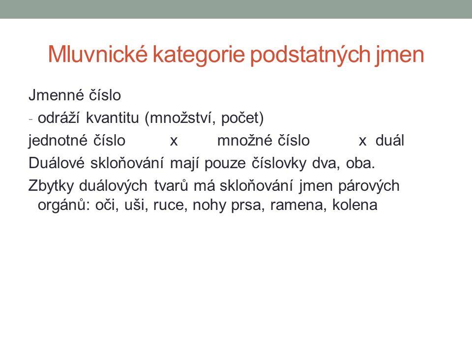 Mluvnické kategorie podstatných jmen