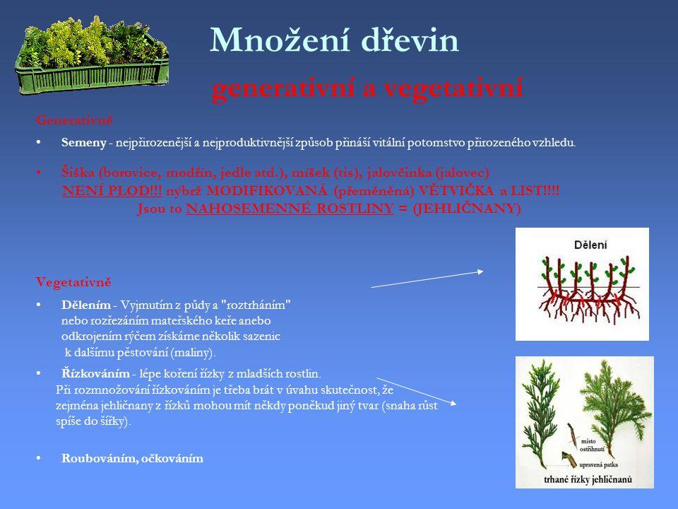 Množení dřevin generativní a vegetativní
