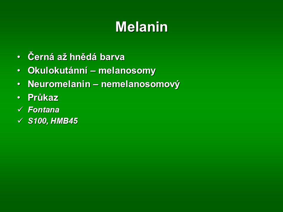 Melanin Černá až hnědá barva Okulokutánní – melanosomy