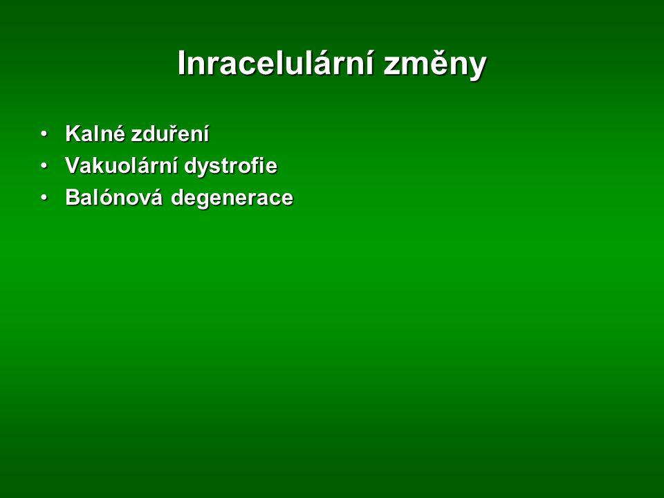 Inracelulární změny Kalné zduření Vakuolární dystrofie