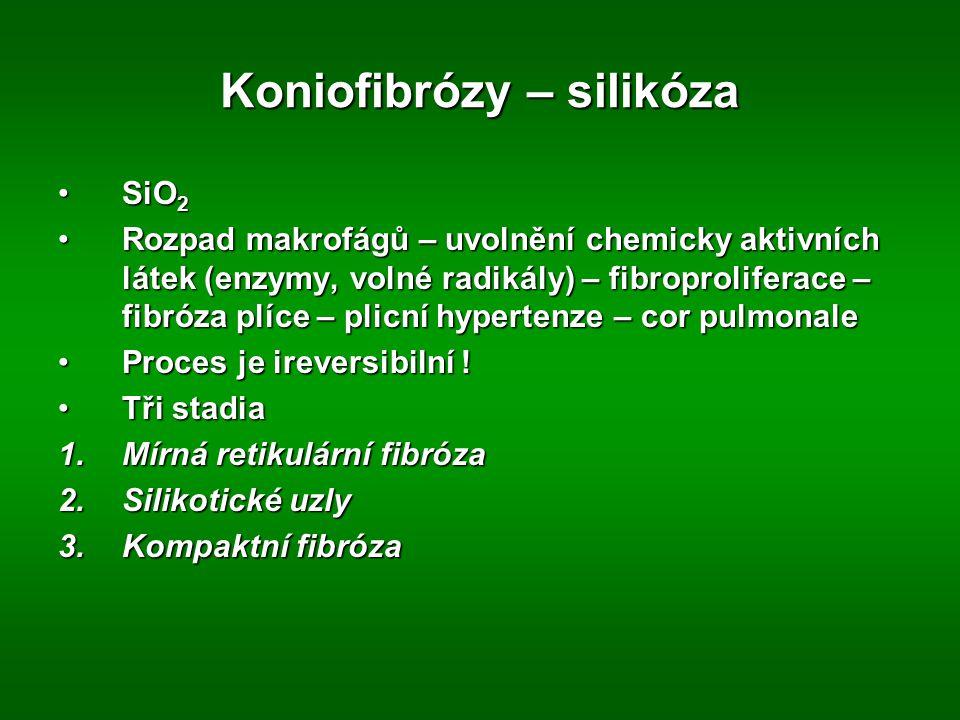 Koniofibrózy – silikóza