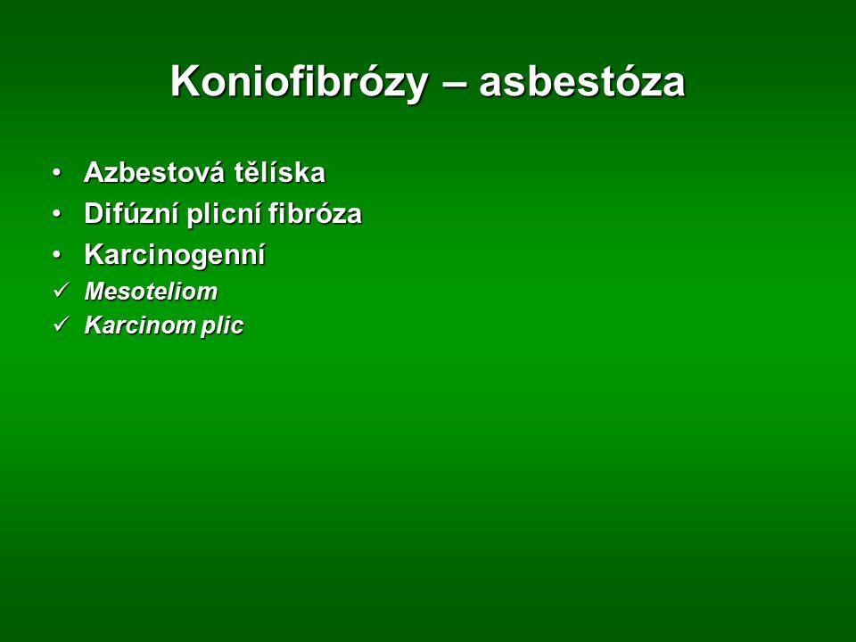 Koniofibrózy – asbestóza