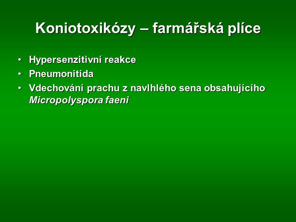 Koniotoxikózy – farmářská plíce
