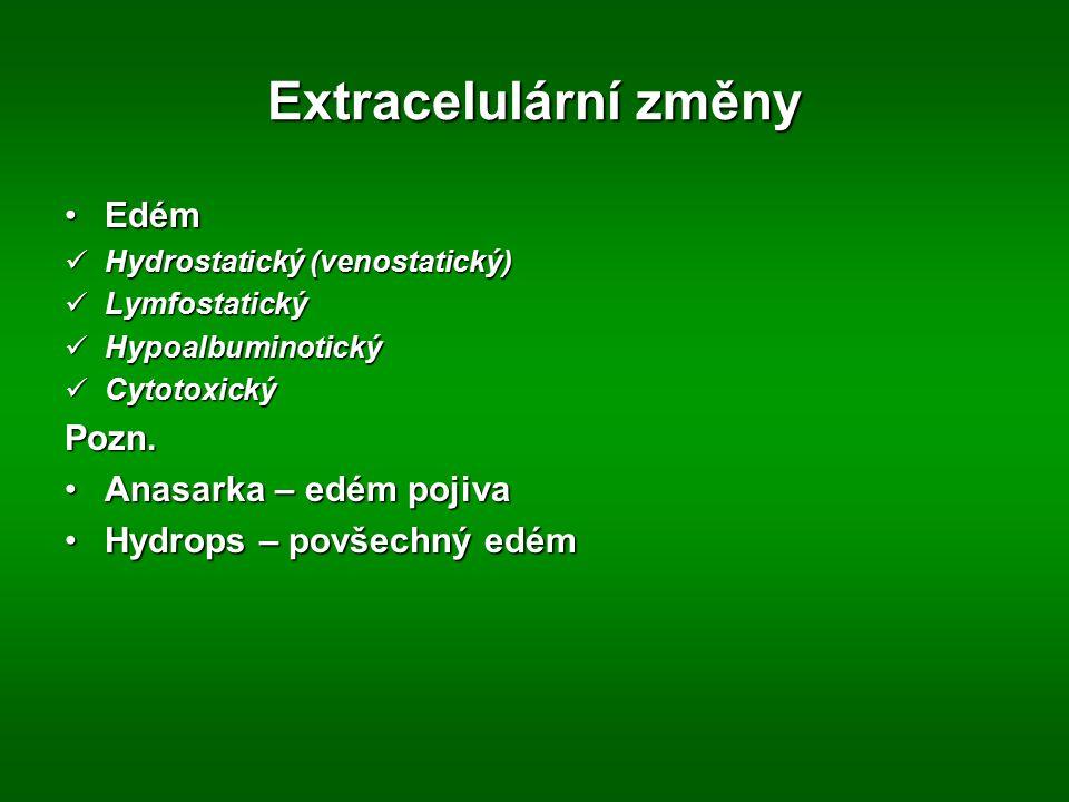 Extracelulární změny Edém Pozn. Anasarka – edém pojiva