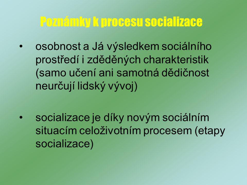 Poznámky k procesu socializace