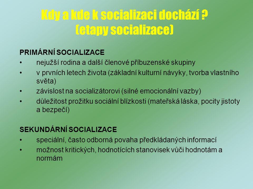 Kdy a kde k socializaci dochází (etapy socializace)