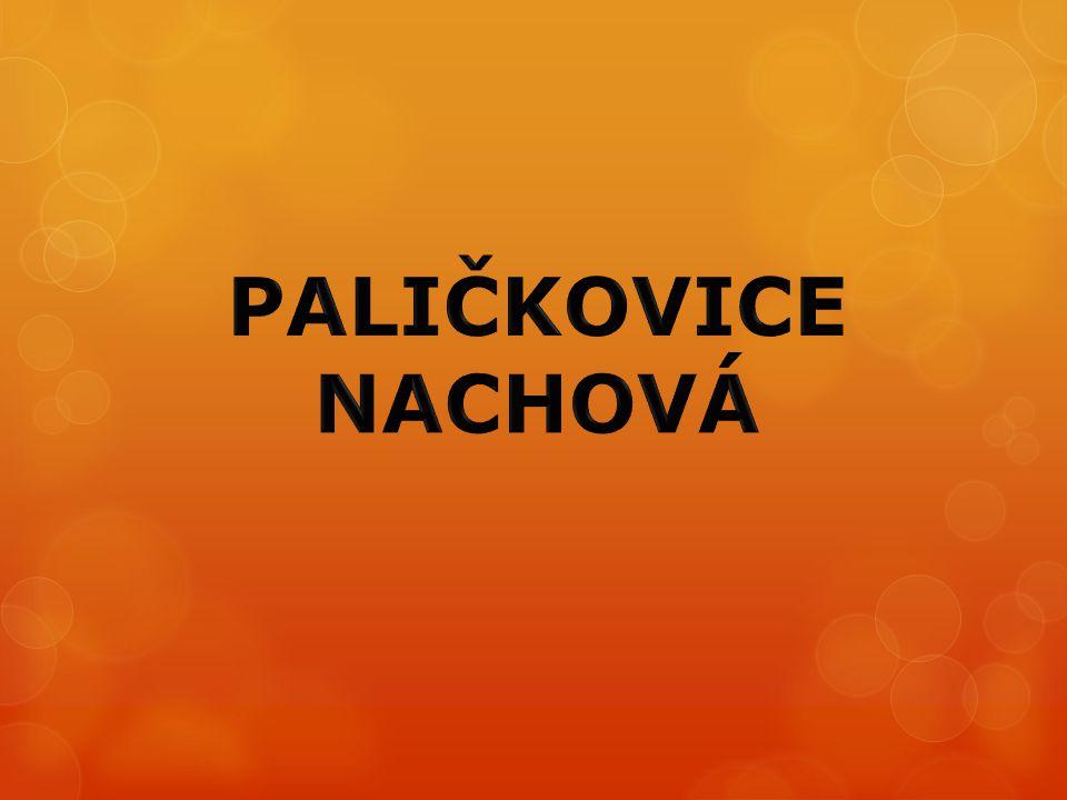 PALIČKOVICE NACHOVÁ