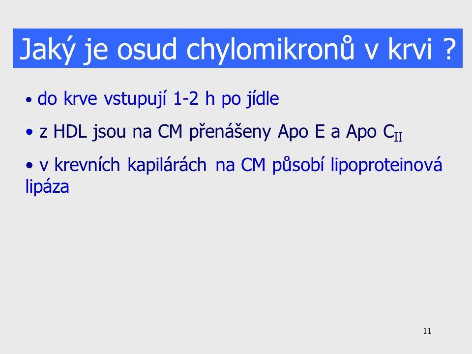 Jaký je osud chylomikronů v krvi